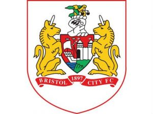 Bristol City Skybet Championship @ Ashton Gate   Bristol   England   United Kingdom